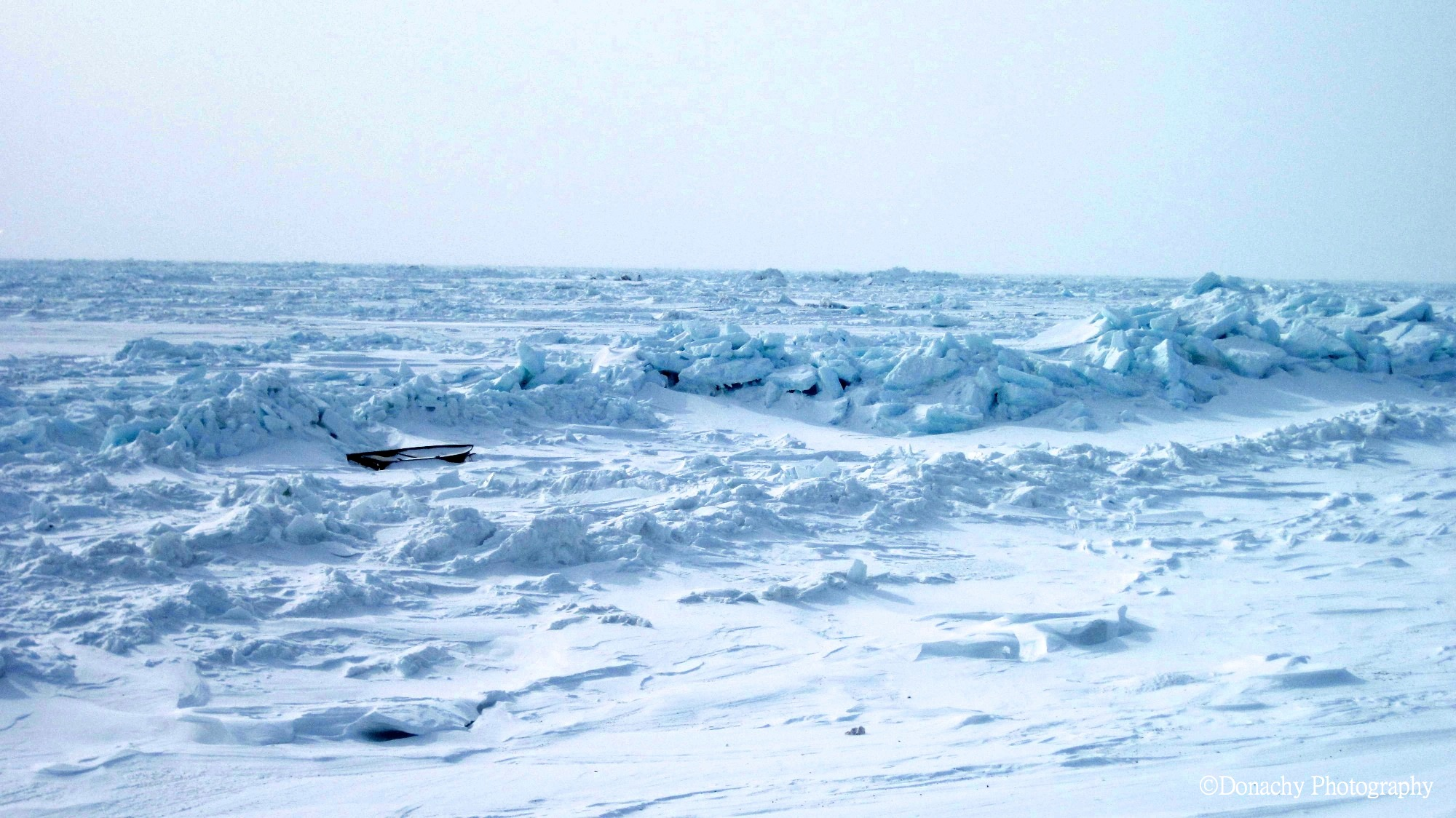 whaling | CutterLight