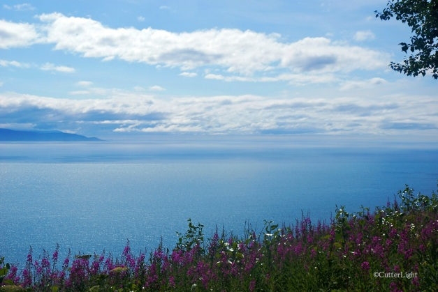 Lower Cook Inlet near Homer_n