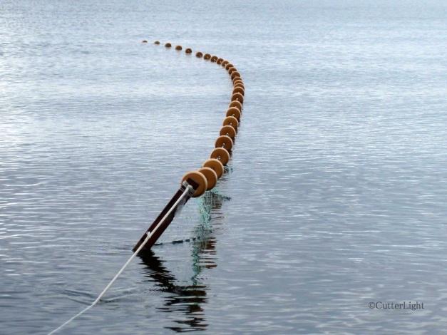 fishnig net, Point Hope_n
