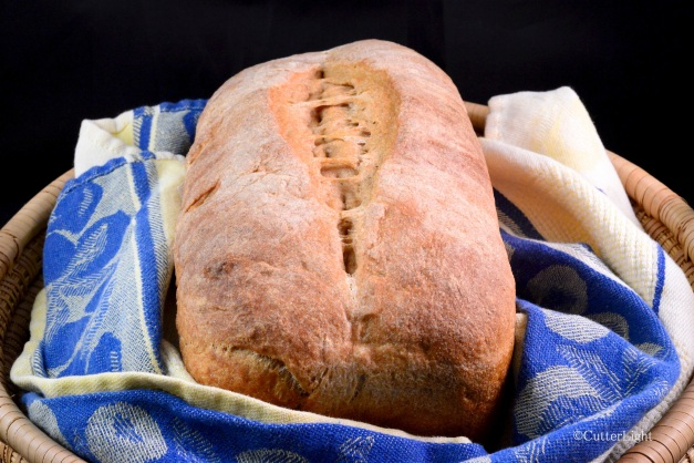 Whole Wheat Bread_n