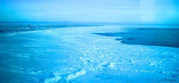 Sea Ice3_n