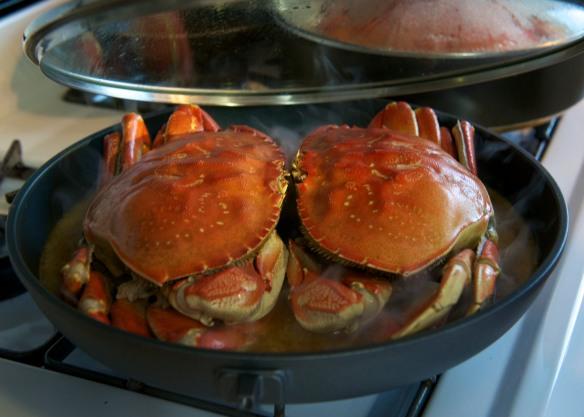 crabs honeymoon d800