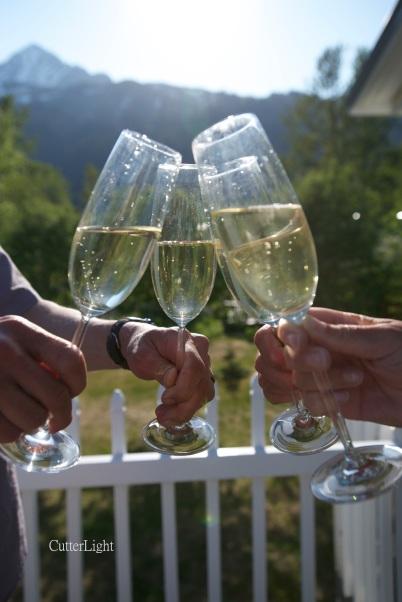 champagne toast a_n