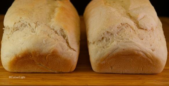 potato bread b n
