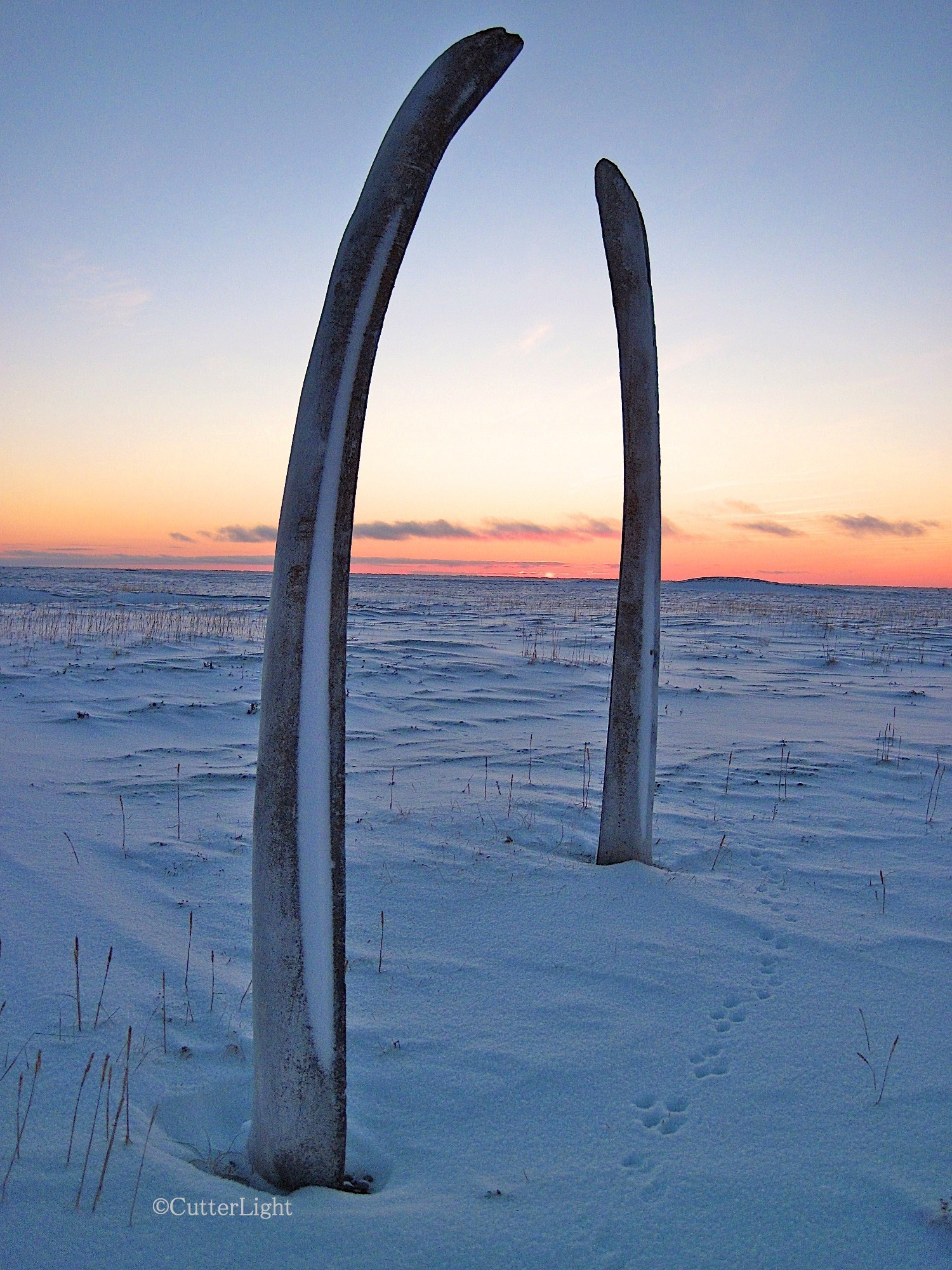whale jaw arches dawn n