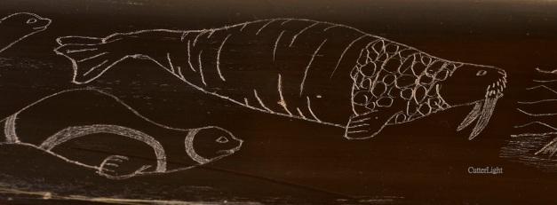 HK walrus skrimshaw detail n