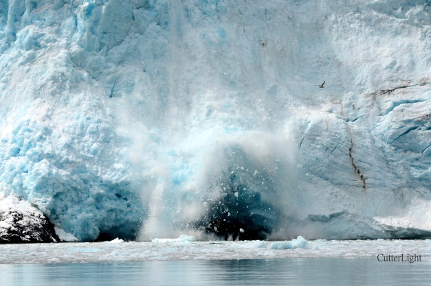 Holegate glacier sluffing ice n