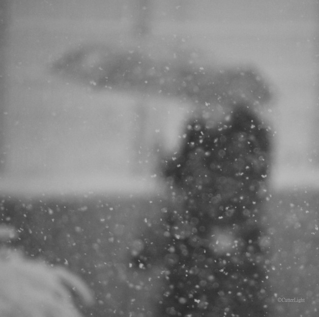 woman w umbrella b n w snowy day n