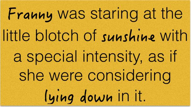 franny-sunshine