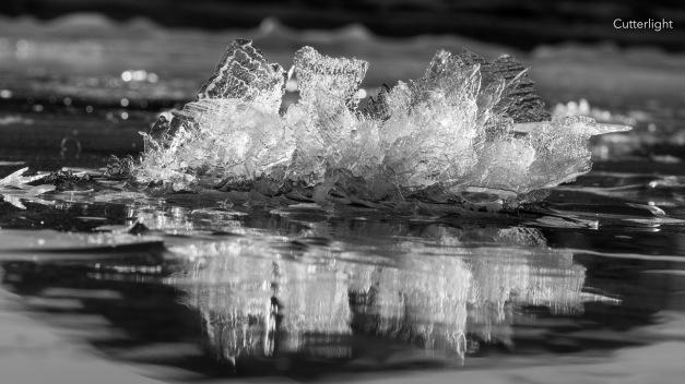 ice-sculputre-1-n