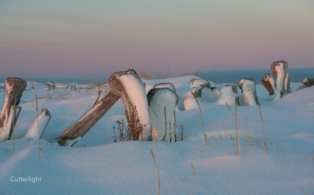 x whale bone ruins Tikigaq copy n
